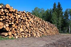 Cosecha de registros de la madera imagen de archivo