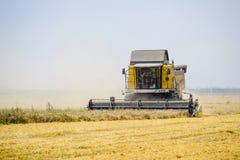 Cosecha de trigo con una máquina segadora Fotos de archivo