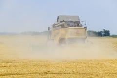 Cosecha de trigo con una máquina segadora Fotografía de archivo libre de regalías