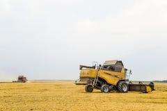 Cosecha de trigo con una máquina segadora Fotos de archivo libres de regalías