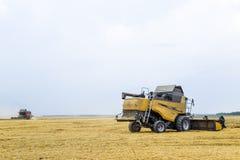 Cosecha de trigo con una máquina segadora Imágenes de archivo libres de regalías