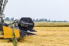 Cosecha de trigo con una máquina segadora Fotografía de archivo