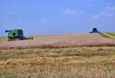 Cosecha de trigo en field_5 Foto de archivo