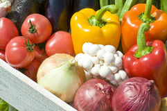 Cosecha de verduras Imágenes de archivo libres de regalías