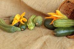 Cosecha del calabacín, aún vida en yute Fotos de archivo