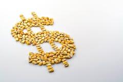 Cosecha del maíz del efectivo IV Fotos de archivo