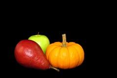 Cosecha del otoño Fotos de archivo