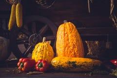Cosecha del otoño, carro del vintage por completo con las verduras imagenes de archivo
