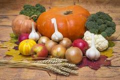 Cosecha del otoño de verduras del jardín Calabaza, cebolla, ajo, manzanas, bróculi, trigo Ingredientes de la nutrición sana foto de archivo