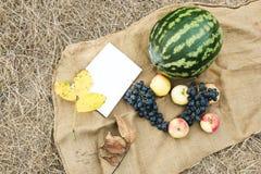 Cosecha del otoño de verduras y de frutas Día de la acción de gracias Foto de archivo libre de regalías
