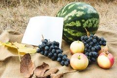 Cosecha del otoño de verduras y de frutas Día de la acción de gracias Imagen de archivo libre de regalías