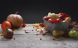 Cosecha del otoño y fondo de la tarjeta de la acción de gracias Imagenes de archivo