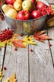 Cosecha del otoño y fondo de la tarjeta de la acción de gracias Fotos de archivo