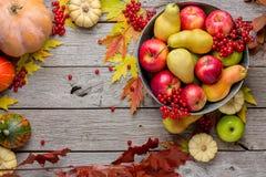 Cosecha del otoño y fondo de la tarjeta de la acción de gracias Imagen de archivo