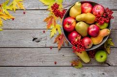 Cosecha del otoño y fondo de la tarjeta de la acción de gracias Fotografía de archivo libre de regalías