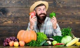 Cosecha en campo comida estacional de la vitamina Fruta y verdura ?til Festival de la cosecha Comida org?nica y natural Feliz fotos de archivo