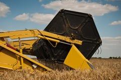 Cosecha en campo de trigo Imagen de archivo libre de regalías