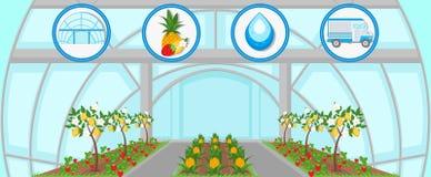 Cosecha en invernadero Ejemplo plano del vector libre illustration