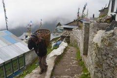 Cosecha Everest Himalaya de la patata Fotos de archivo