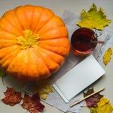Cosecha fresca de la calabaza anaranjada Fotos de archivo libres de regalías