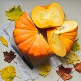 Cosecha fresca de la calabaza anaranjada Imágenes de archivo libres de regalías