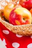 Cosecha fresca de manzanas Concepto de la fruta de la naturaleza Fotografía de archivo