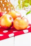 Cosecha fresca de manzanas Concepto de la fruta de la naturaleza Fotos de archivo