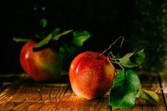Cosecha fresca de manzanas Tema de la naturaleza con las uvas rojas en fondo de madera Imagen de archivo