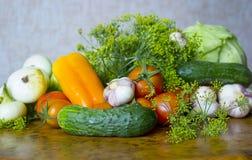 Cosecha fresca del verano de verduras del primer del jardín Fotografía de archivo libre de regalías