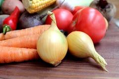Cosecha fresca montada del otoño de las verduras de la cebolla fotografía de archivo