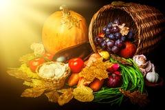 Cosecha hermosa del otoño de verduras Imágenes de archivo libres de regalías