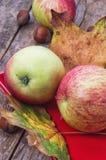 Cosecha madura, dulce del otoño de la manzana Fotografía de archivo