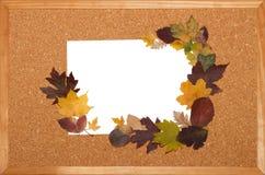 Cosecha para las postales del otoño Imagenes de archivo