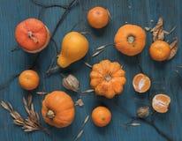 Cosecha rica de diversas frutas fotos de archivo