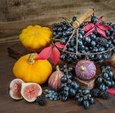 Cosecha rica de diversas frutas y verduras Imágenes de archivo libres de regalías