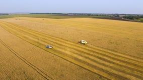 Cosechadora aérea que trabaja en campo de trigo foto de archivo