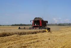 Cosechadora de la máquina segador del grano en el campo Foto de archivo libre de regalías