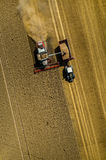 Cosechadora que trabaja en el campo de trigo Imagen de archivo libre de regalías