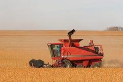 Cosechadora roja en campo de la soja Imagen de archivo