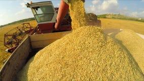 Cosechadora rural que descarga granos en el remolque en almacen de metraje de vídeo