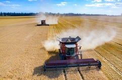 Cosechadoras y tractores que trabajan en el campo de trigo Imagenes de archivo