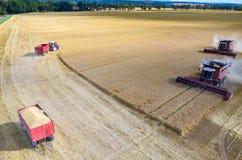 Cosechadoras y tractores que trabajan en el campo de trigo Imagen de archivo