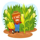 Cosechando el granjero In un campo de maíz ilustración del vector