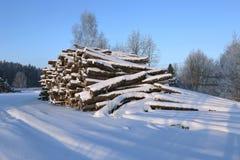 Cosechando la madera abre una sesión un bosque foto de archivo