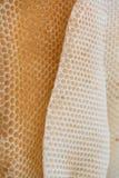 Coseup salvaje de la textura del panal de la cera de las abejas Forme de hexágonos irregulares de la cera dentro de la colmena Imagen de archivo libre de regalías