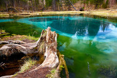 Cosiddetto lago blu del geyser in montagne di Altai Fotografia Stock