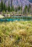 Cosiddetto lago blu del geyser in montagne di Altai Fotografie Stock