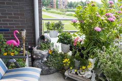 Cosiness with flowers and plants on the balcony stock photo