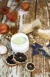 Cosmético orgánico Cosméticos y crema de la hierba de los componentes handmade imagenes de archivo