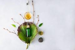 Cosmético orgánico del balneario con los ingredientes herbarios Suero vegetal para la piel con los extractos herbarios botella de imágenes de archivo libres de regalías
